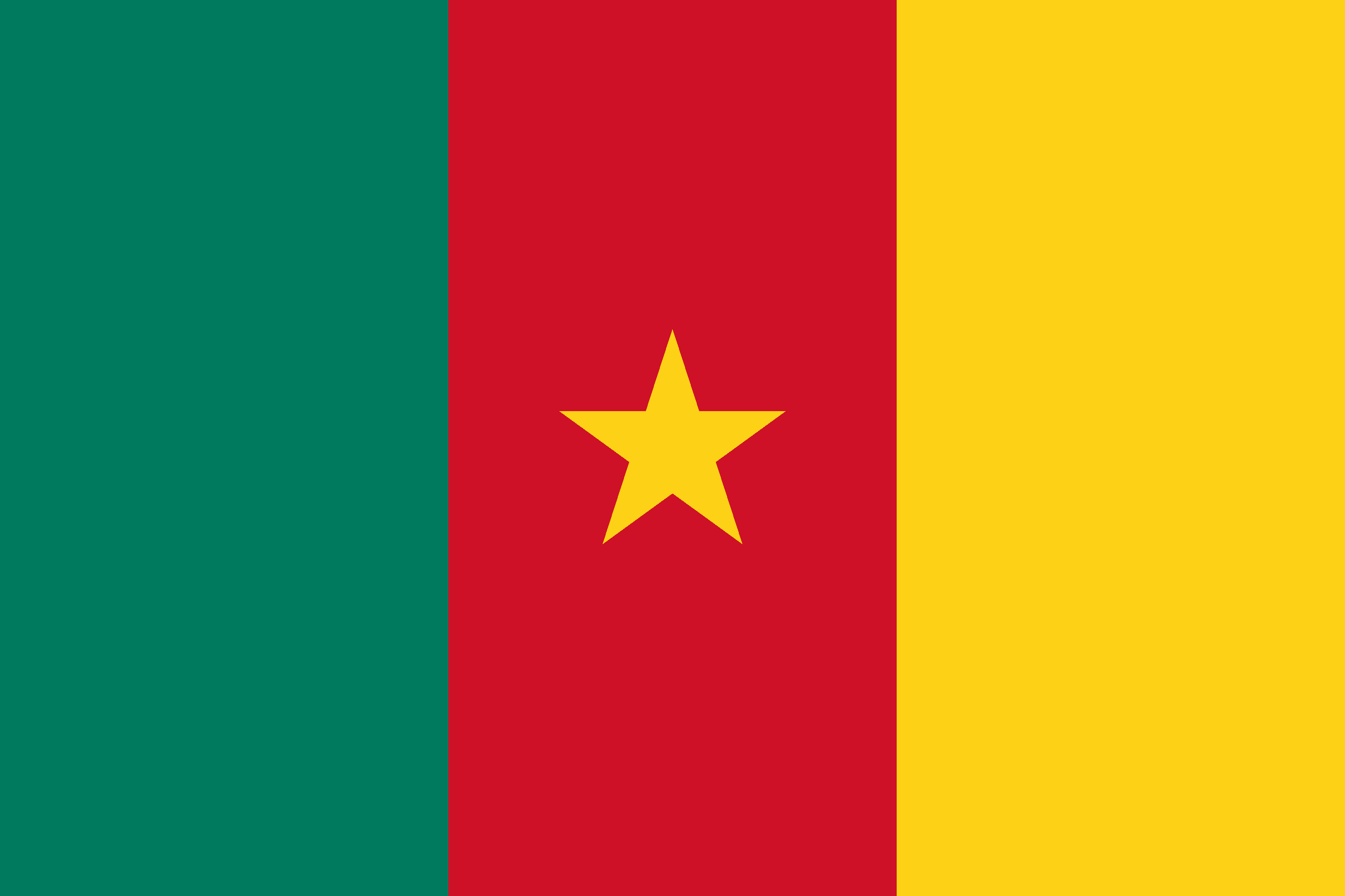 Cameroon Flag - Drone Laws in Cameroon